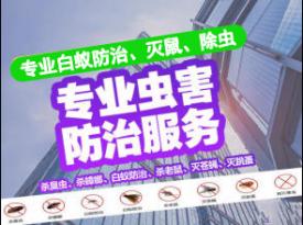 广州杀虫消毒